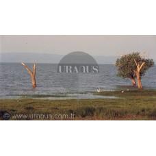 Manyas Gölü, Bandırma