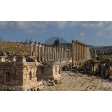 Jerash Antik Yerleşimi / Ürdün