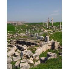 Apamea / Suriye
