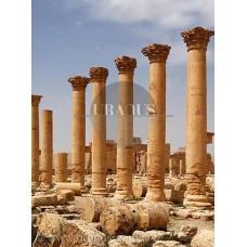 Palmyra / Suriye