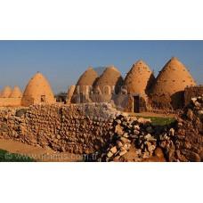 Qasr Ibn Wardan / Hama